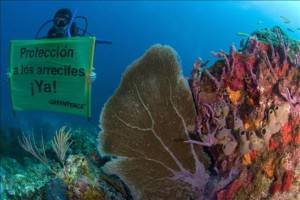 corales-mexico-greenpeace